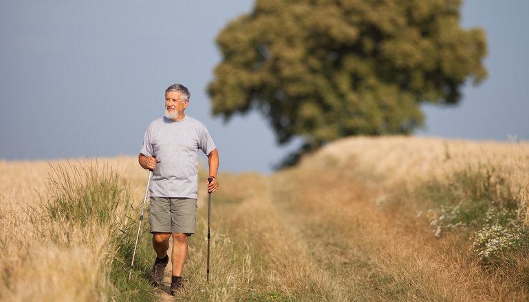 En äldre man går stavgång på en gräsbevuxen väg mellan mogna sädesfält.