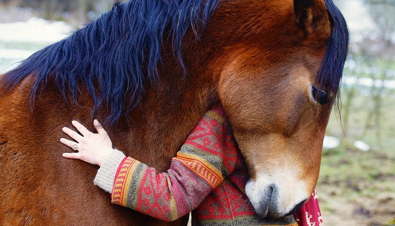 Tjej kramar om en häst.
